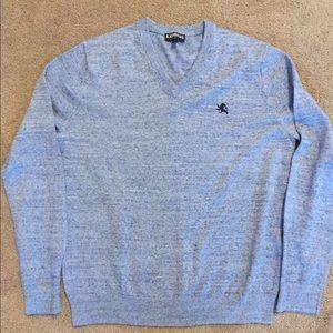 Express V-Neck Sweater